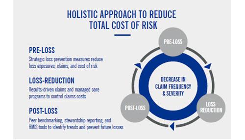 TPA_holistic_approach_infographic_holistic_circle